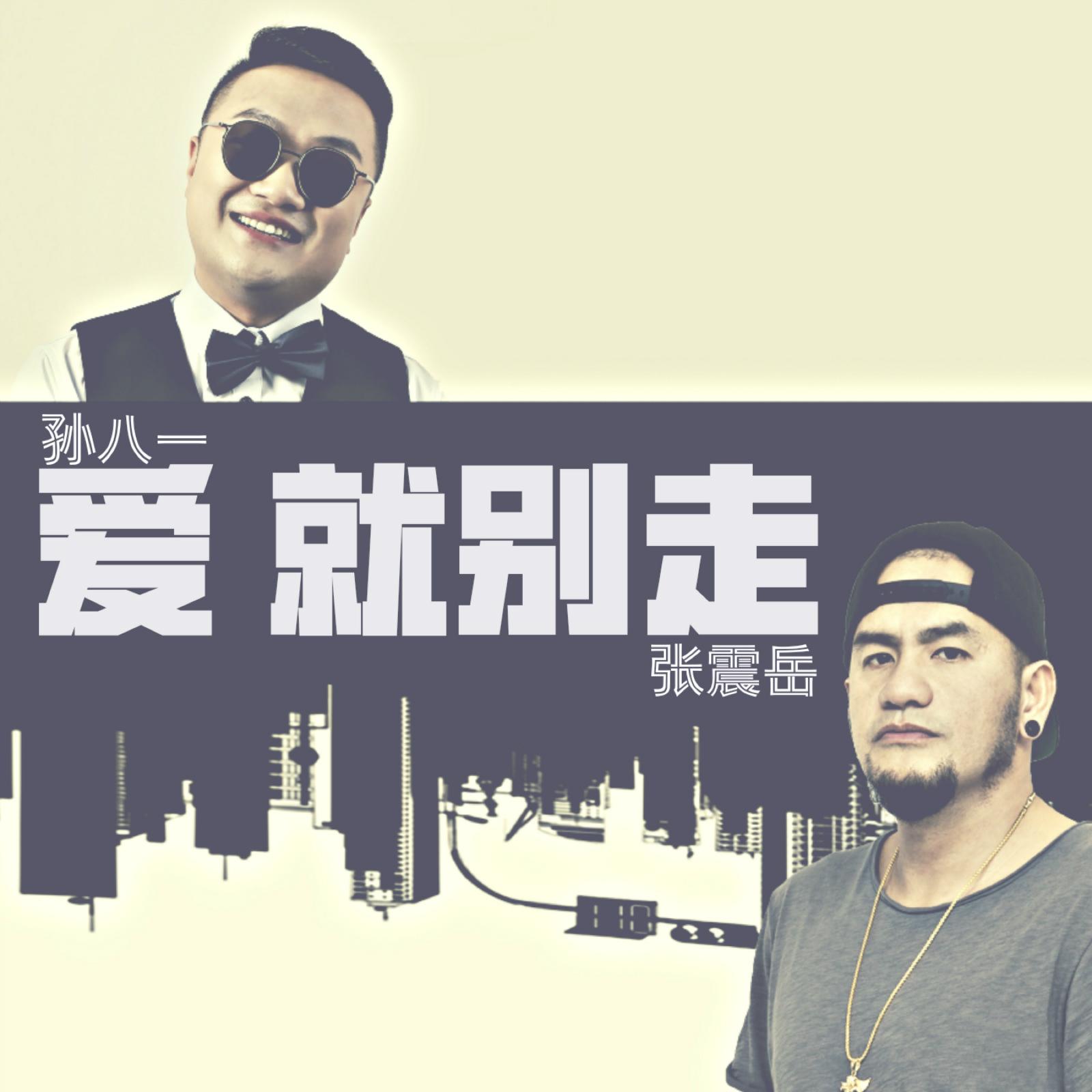 爱就别走 官方版 - 孙八一 &张震岳 未知 MV音乐在线观看