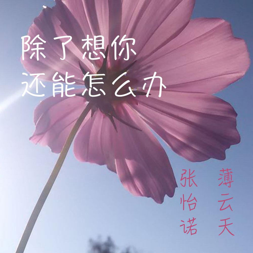 【新歌速递】 薄云天&张怡诺最新专辑《除了想你还能怎么办》