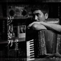 沙宝亮2019专辑《消失的唱片店之岁月如刀》